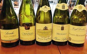 Burgundin valkoviinejä