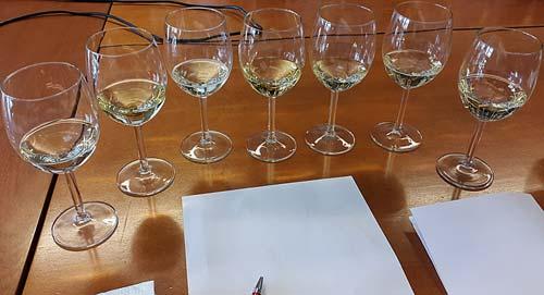 Viinien sokkotastingin 7 kuohuviiniä